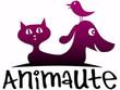 Animaute Promo codes